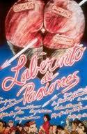 """Locandina del film """"Labirinto di passioni"""""""